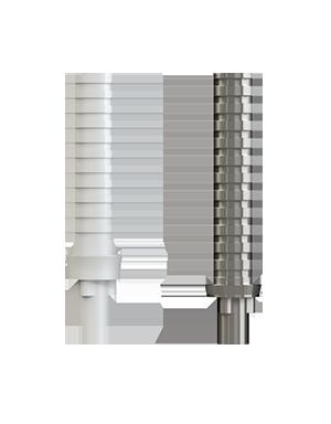 Temporary Cylinder PEEK/Titanium